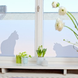 N/A Vindues film - ella & ceasar katte (large) fra fenomen