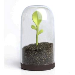 N/A Opbevaringsglas med ske - sprout jar fra fenomen