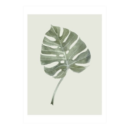 Plakat Leaf - A2