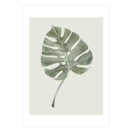 Plakat Leaf - A3