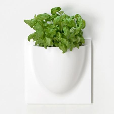 VertiPlants hvid stor - krukke til væggen