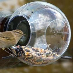born in sweden – Bird feeder foderbræt - born in sweden på fenomen