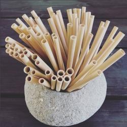 Bambus sugerør - 5 stk. fra encoded på fenomen