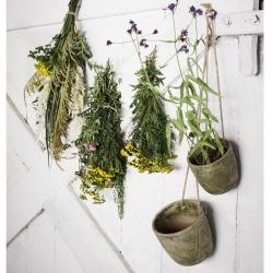 madame stoltz – Blomster krukker hængende 2 stk. grøn på fenomen