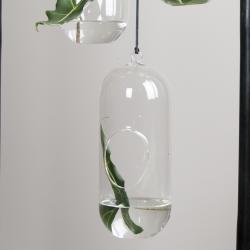 Image of   Hængende glas DBKD - large