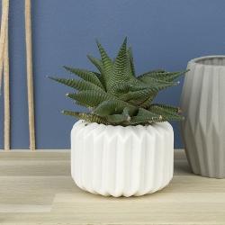 Image of   Riffle vase i hvid