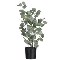 Billede af Kunstig plante eucalyptus