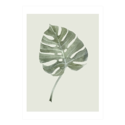 Image of   Plakat Leaf - A2