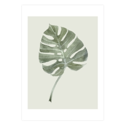 Image of   Plakat Leaf - A3