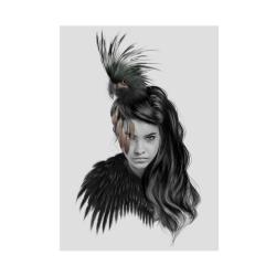 Plakat - little bird fra linn wold på fenomen