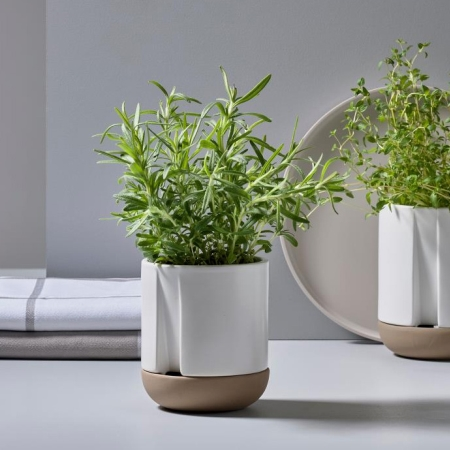 Herb & Sprout - Krydderurtepotte Zone - small